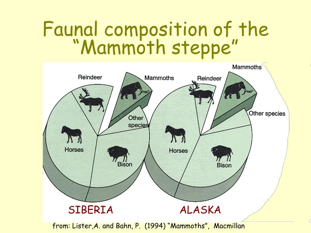 "Faunal composition of the ""Mammoth steppe"""