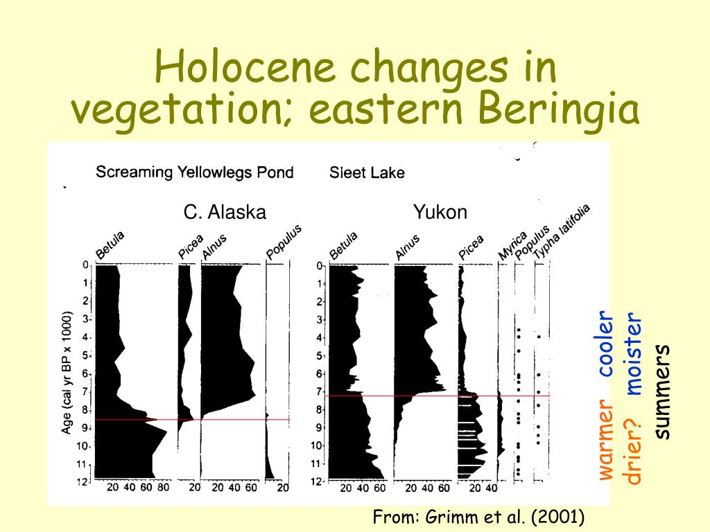 Holocene changes in vegetation; eastern Beringia