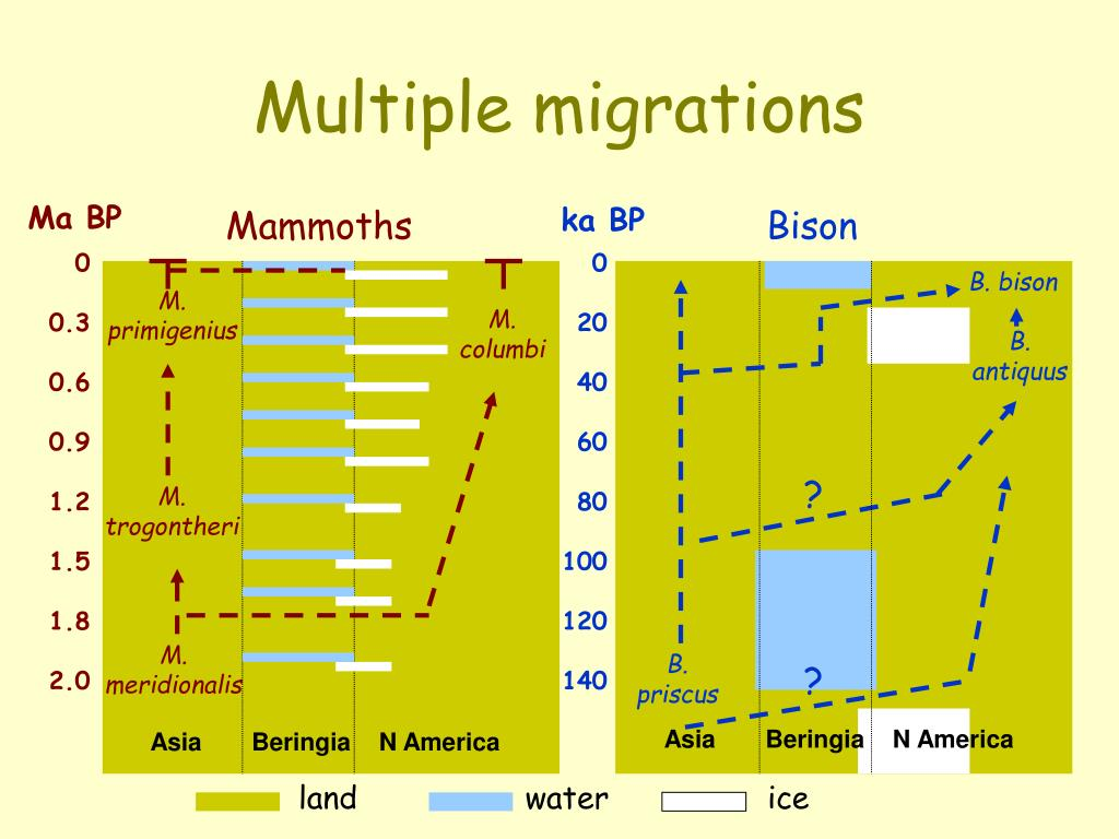 Multiple migrations