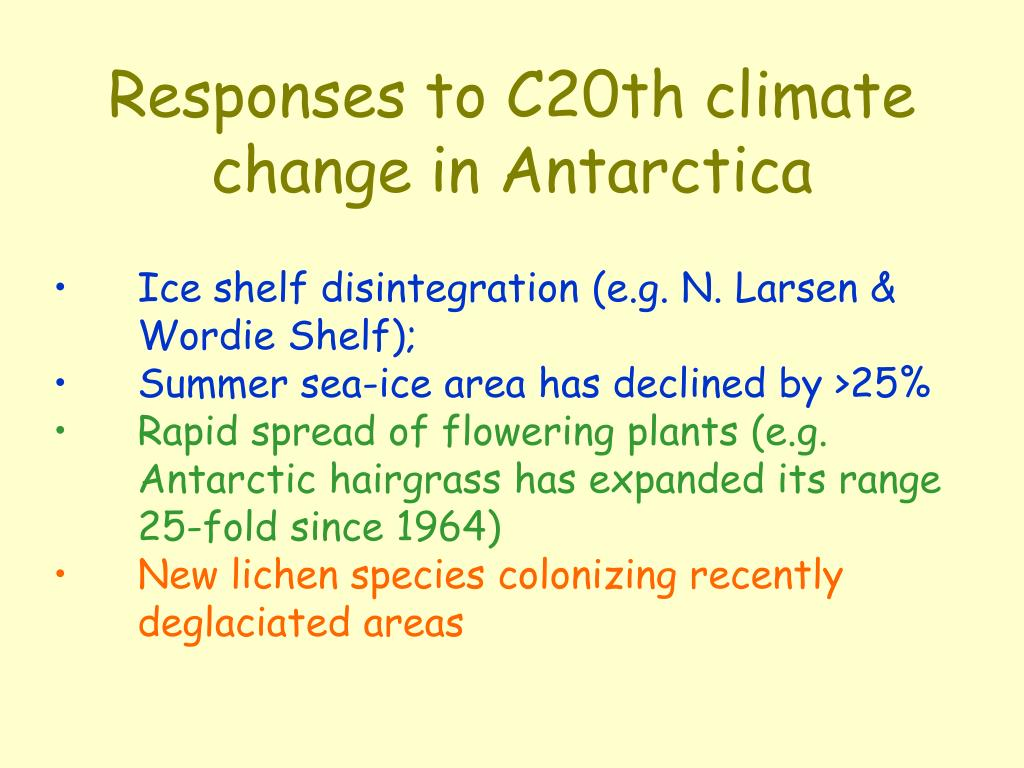 Responses to C20th climate change in Antarctica