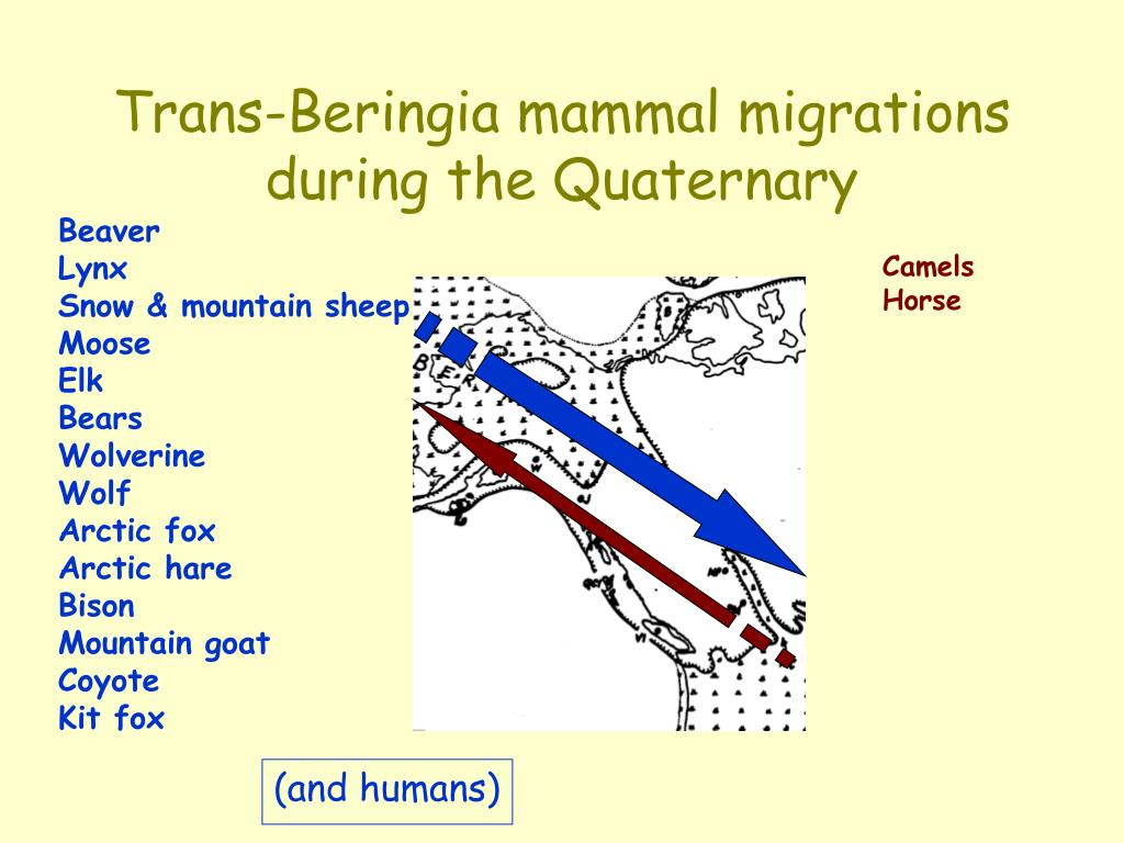 Trans-Beringia mammal migrations during the Quaternary