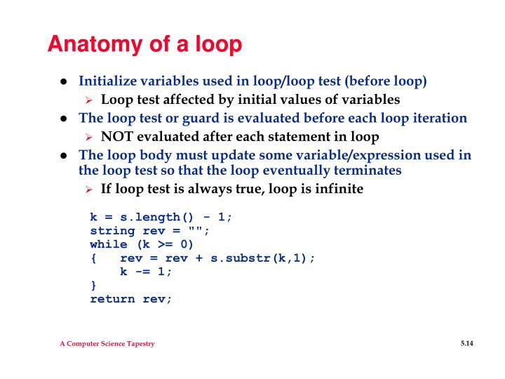 Anatomy of a loop