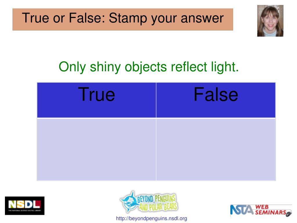 Only shiny objects reflect light.