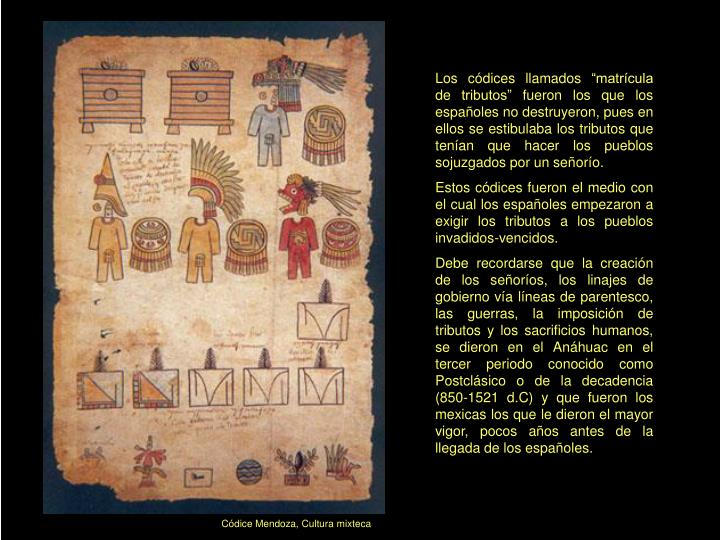 """Los códices llamados """"matrícula de tributos"""" fueron los que los españoles no destruyeron, pues en ellos se estibulaba los tributos que tenían que hacer los pueblos sojuzgados por un señorío."""
