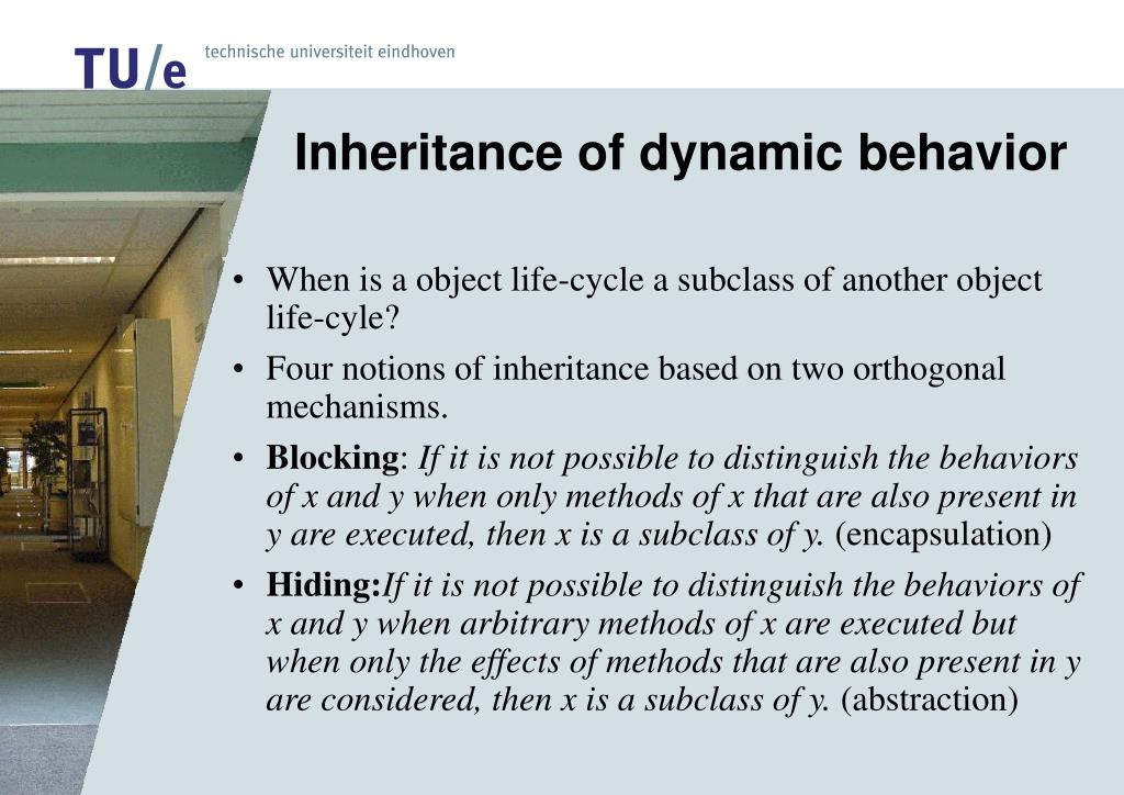 Inheritance of dynamic behavior