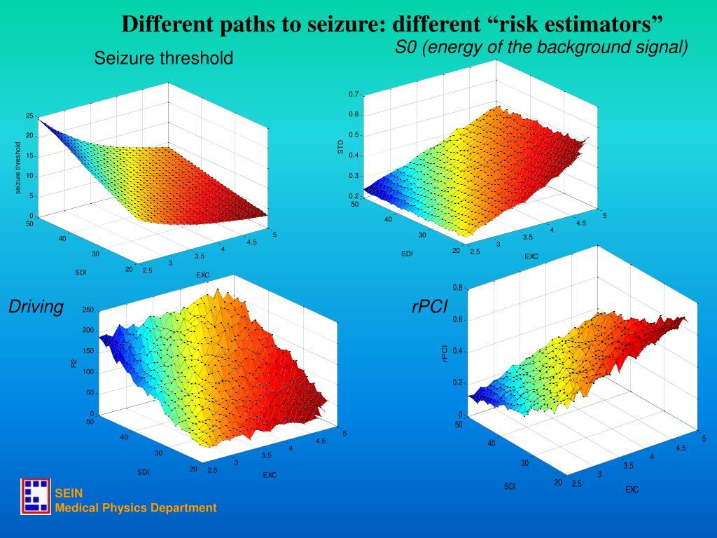 "Different paths to seizure: different ""risk estimators"""