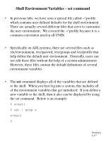 shell environment variables set command