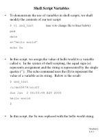 shell script variables