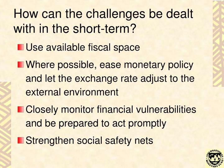 How can the challenges be dealt with in the short-term?