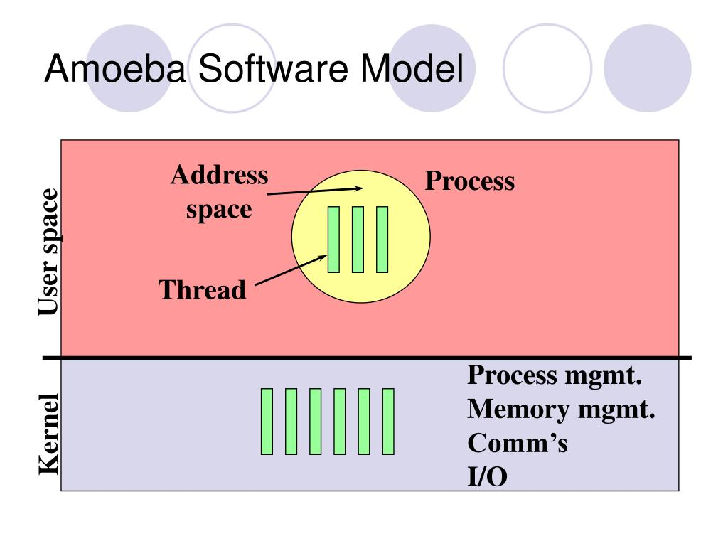 Amoeba Software Model