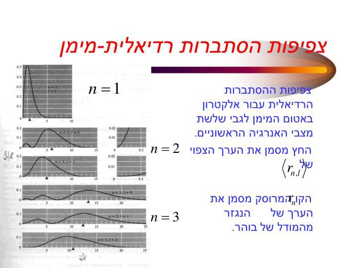 צפיפות הסתברות רדיאלית-מימן