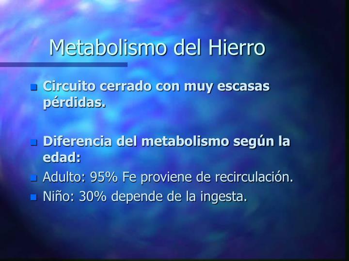 Metabolismo del Hierro