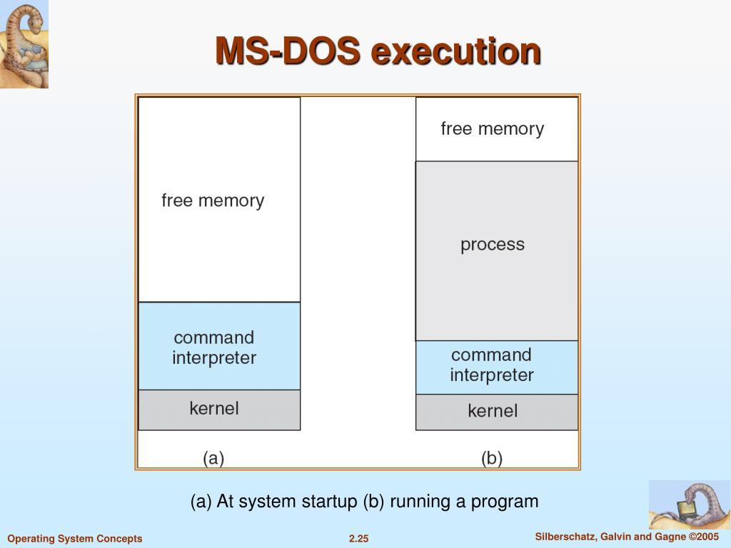 MS-DOS execution