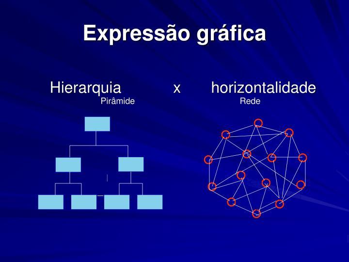 Expressão gráfica