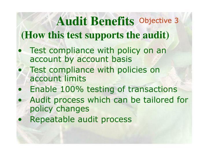 Audit Benefits
