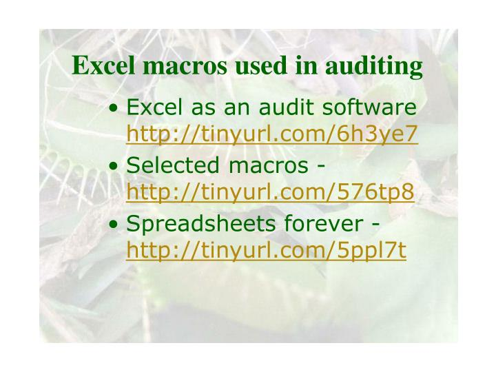 Excel macros used in auditing