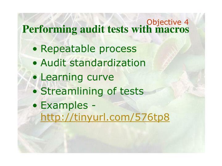 Performing audit tests with macros