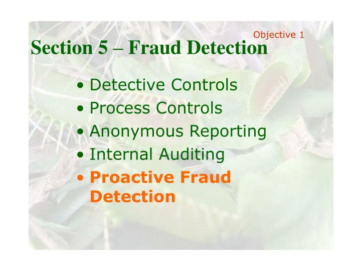 Section 5 – Fraud Detection