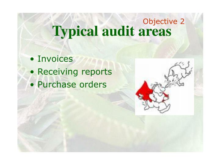 Typical audit areas