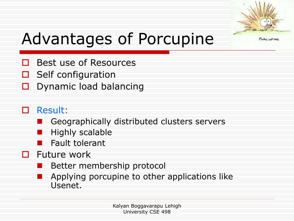 Advantages of Porcupine