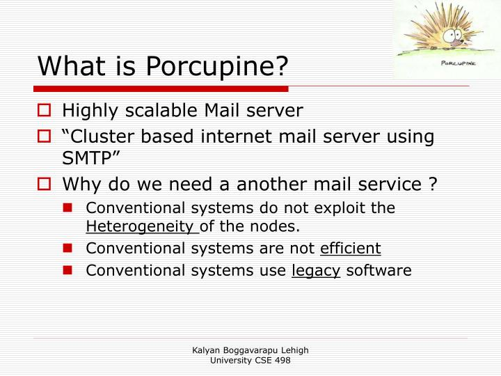 What is porcupine
