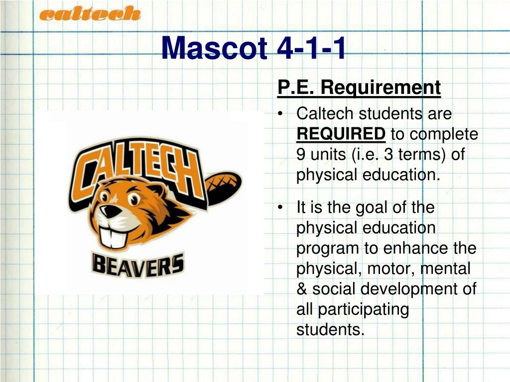 Mascot 4-1-1