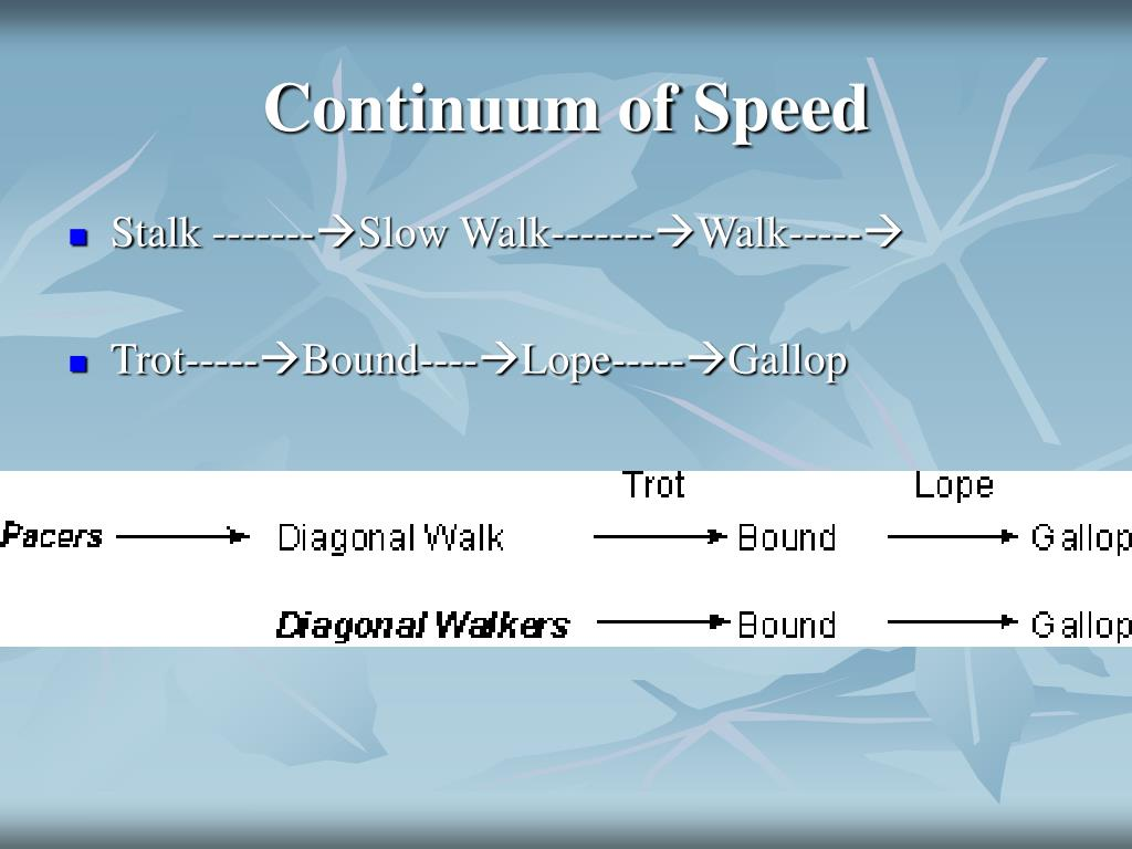 Continuum of Speed