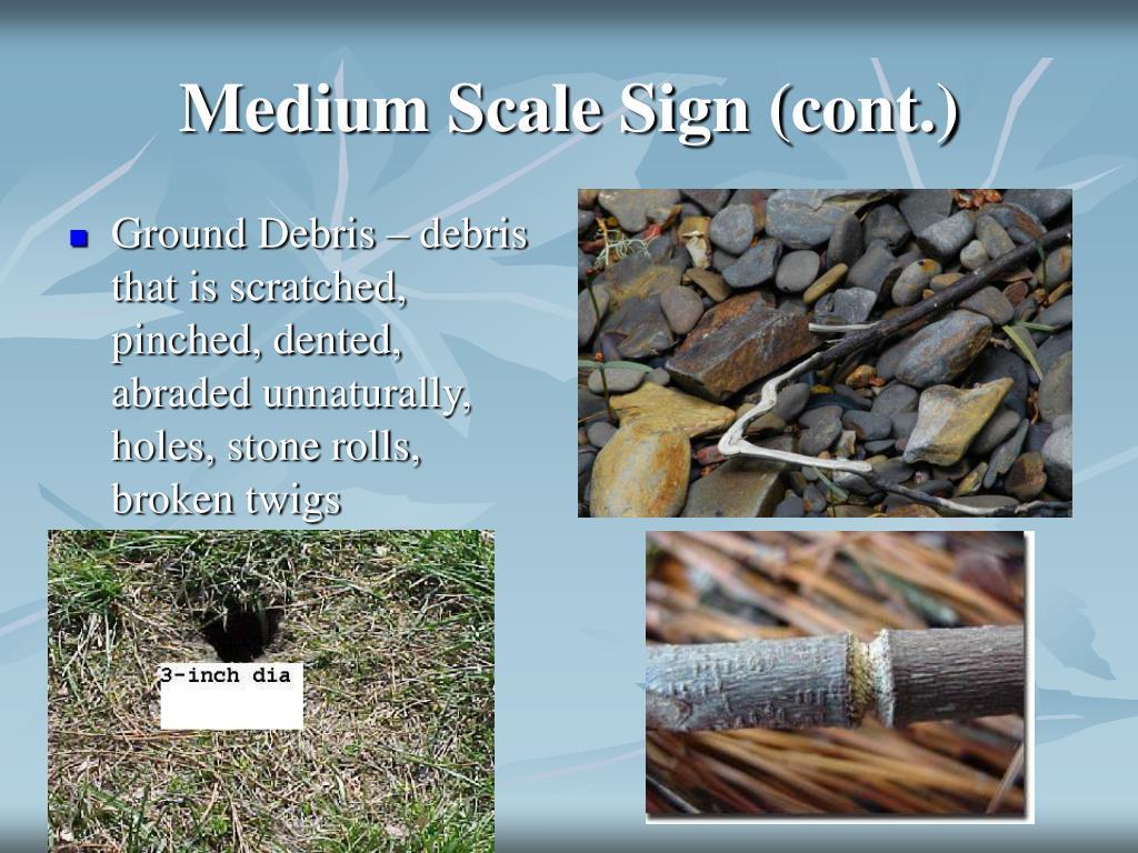 Medium Scale Sign (cont.)