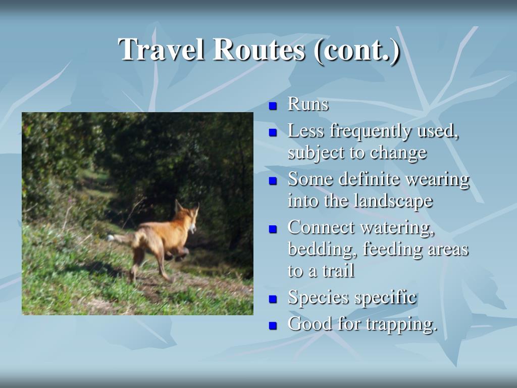 Travel Routes (cont.)