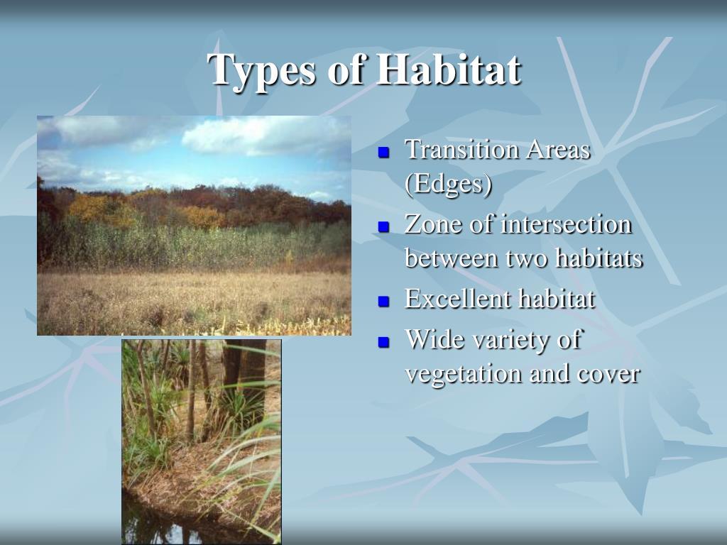 Types of Habitat