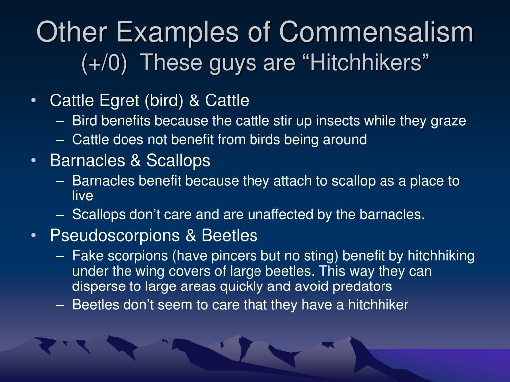 Other Examples of Commensalism