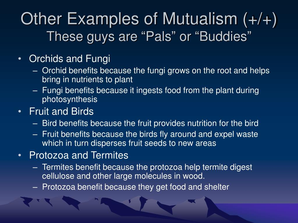 Other Examples of Mutualism (+/+)