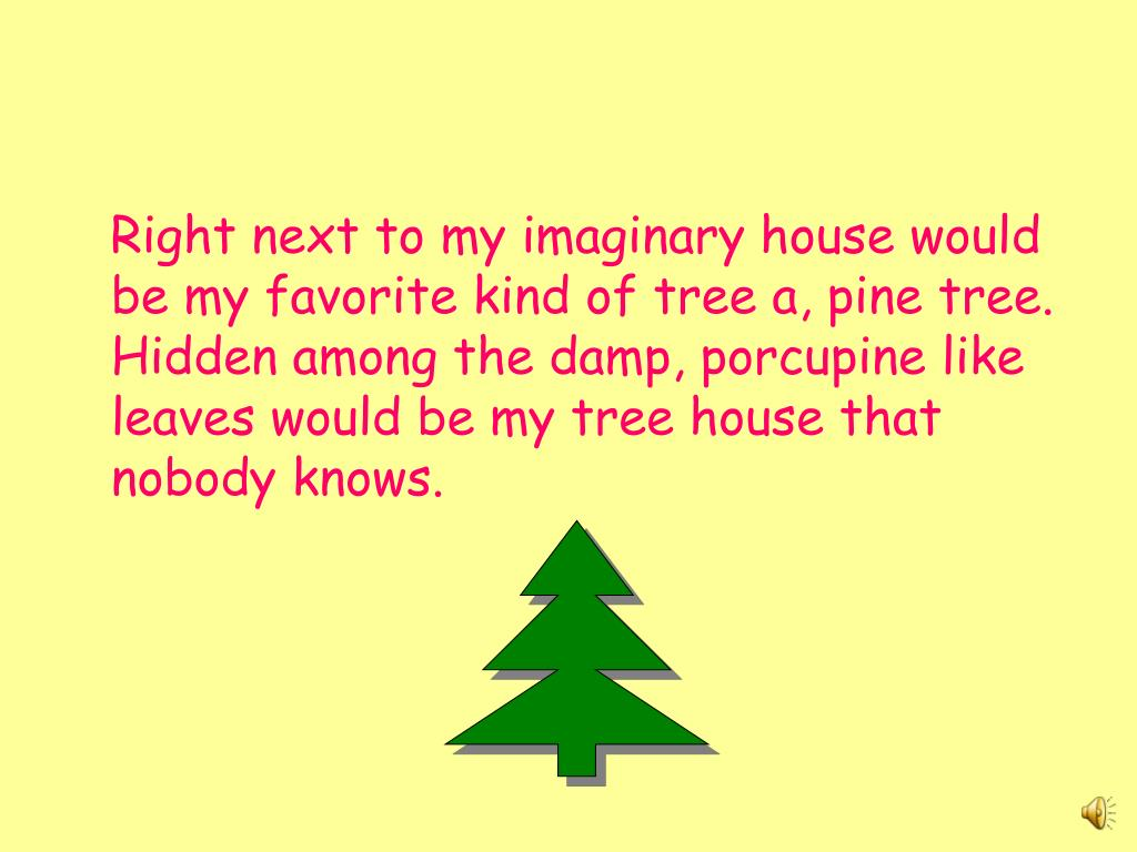 Right next to my imaginary house would be my favorite kind of tree a, pine tree. Hidden among the damp, porcupine like leaves would be my tree house that nobody knows.