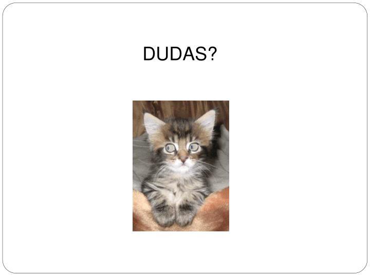 DUDAS?