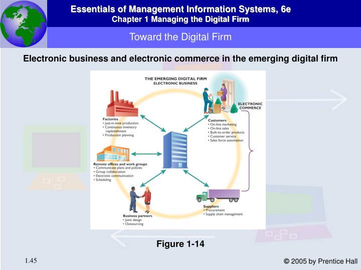 Toward the Digital Firm
