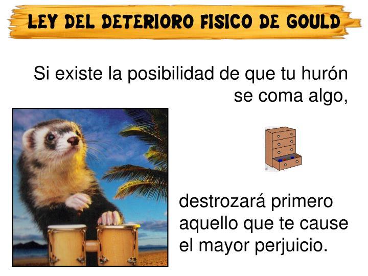 LEY DEL DETERIORO FISICO DE GOULD