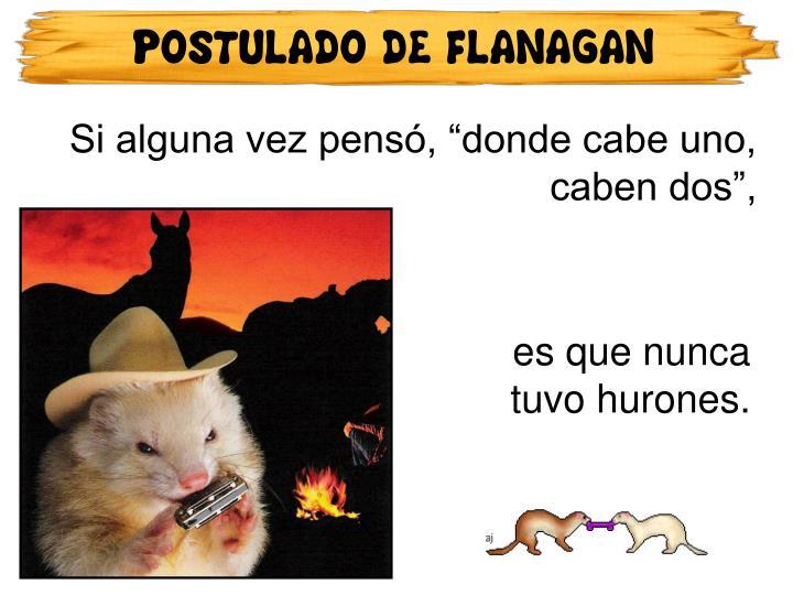 POSTULADO DE FLANAGAN