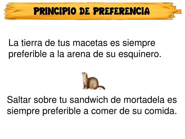 PRINCIPIO DE PREFERENCIA