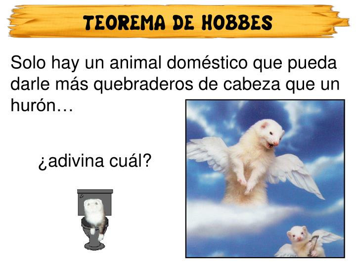TEOREMA DE HOBBES