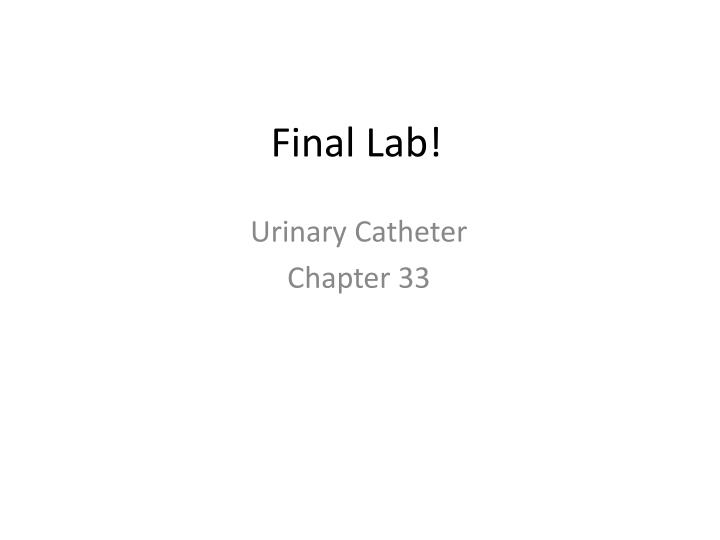 Final Lab!