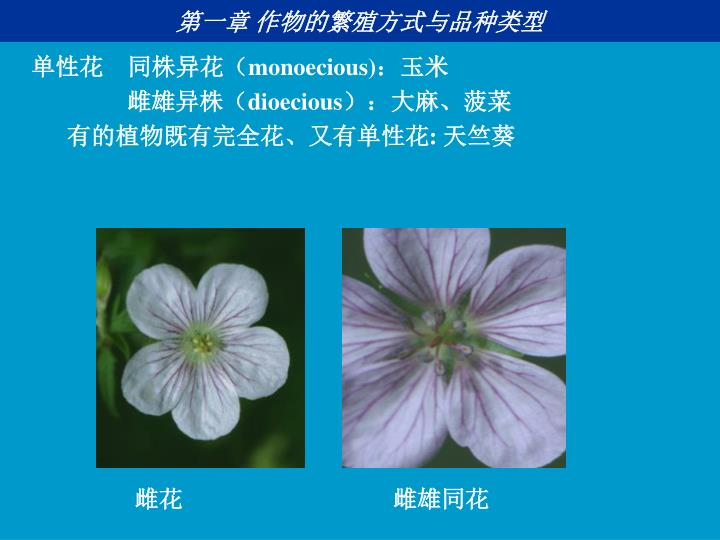 第一章 作物的繁殖方式与品种类型