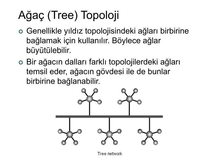 Ağaç (Tree) Topoloji