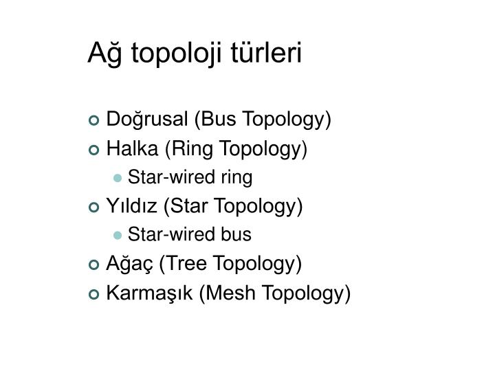 Ağ topoloji türleri