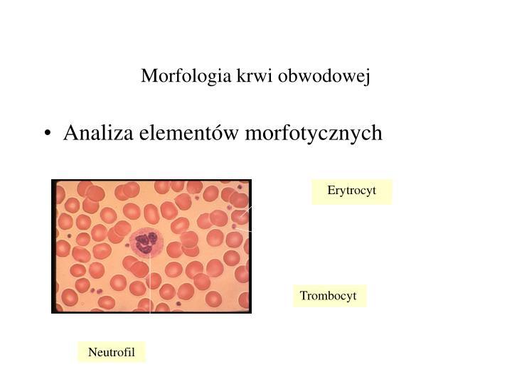 Morfologia krwi obwodowej