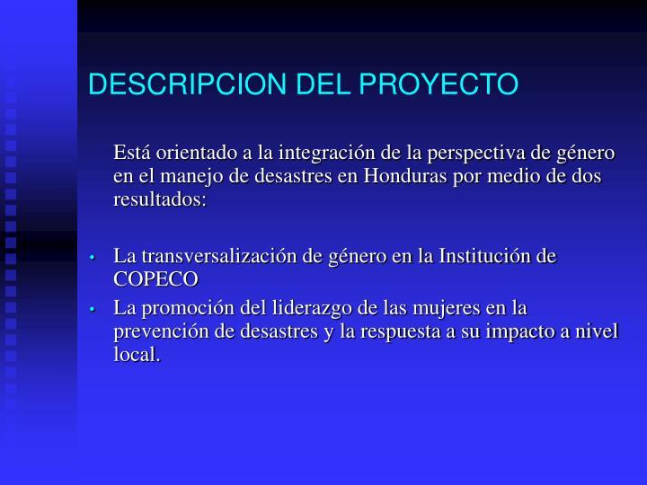 DESCRIPCION DEL PROYECTO