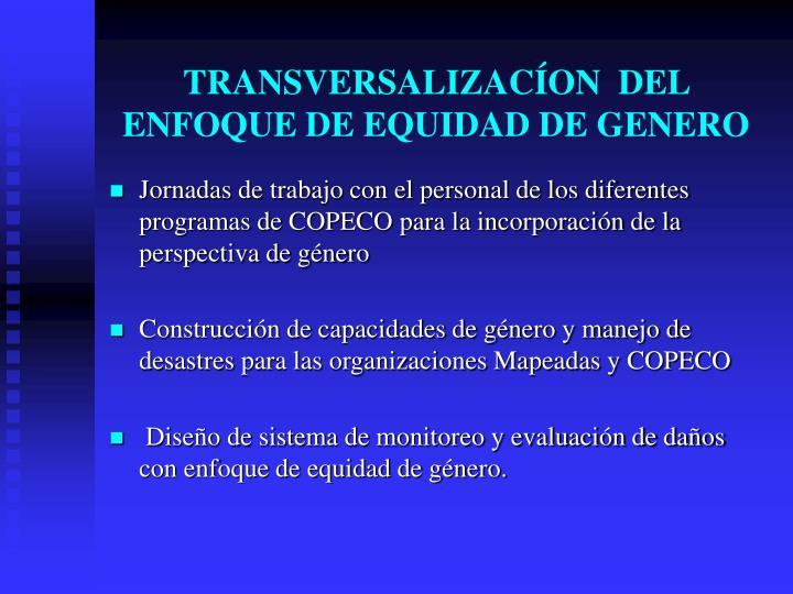TRANSVERSALIZACÍON  DEL ENFOQUE DE EQUIDAD DE GENERO