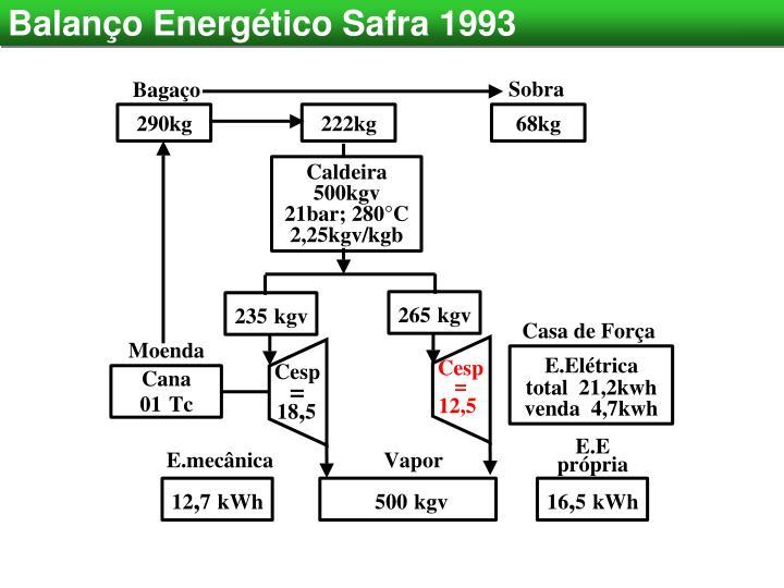 Balanço Energético Safra 1993
