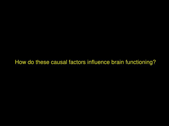 How do these causal factors influence brain functioning?