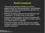 brazil s prospects