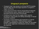 uruguay s prospects